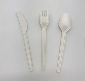 Cpla spoon tableware